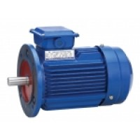 Motor with flange